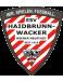 ESV Haidbrunn-Wacker Wiener Neustadt Jug