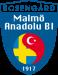 Malmö ABI