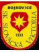 SK Slovacka Viktoria Bojkovice