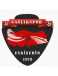 Eskisehir Saglikspor