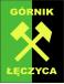 Gornik Leczyca