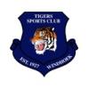 Tigers Windhoek