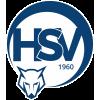 USV Markt Hartmannsdorf