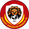 Baskent Akademi FK