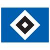 Hamburger SV Altyapı