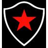 Botafogo Futebol Clube (PB)