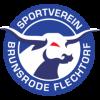 SV Brunsrode/Flechtorf