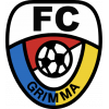 SV Grimma 1919