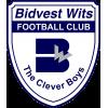 Bidvest Wits FC Jugend