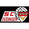 SC Düdingen Молодёжь