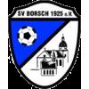 SG SV Borsch 1925