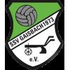 SSV Gaisbach