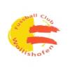 FC Wollishofen