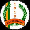 US Palestrina 1919