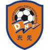 Dongguan Nancheng