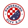 Dandenong City SC