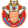 Guangdong Southern Tigers
