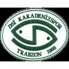 DSI Karadenizspor