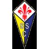 Castelfiorentino Calcio