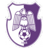 FC Arges Pitesti 1953