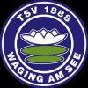 TSV Waging