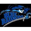 LW Blue Raiders (Lindsey Wilson College)
