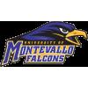Montevallo Falcons (University of Montevallo)