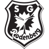 SG Rodenberg