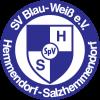 BW Hemmendorf-Salzhemmendorf