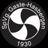 SpVgg Gaste-Hasbergen