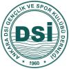 Ankara DSİ Spor