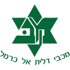 Maccabi Daliyat al-Karmel