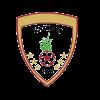 Al-Nojoom FC