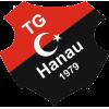 Türk Gücü Hanau