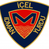 Icelspor