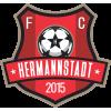 FC Hermannstadt II