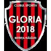 1.FC Gloria Bistrita