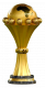 Afrika şampiyonu