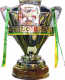 Vincitore Coppa di Brasile