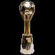 Czech cup winner