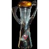 U21 Avrupa şampiyonu