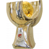 Turkish Super Cup winner