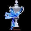 Isländischer Pokalsieger