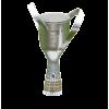 Georgian cup winner