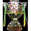Campeão da Copa do Brasil