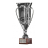 Italian Lega Pro Champion (C)