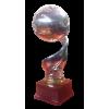Rumänischer Ligapokalsieger