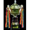 Moldavische supercup winnaar
