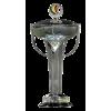 AFC Cup Winner