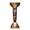 AFC Challenge Cup Winner